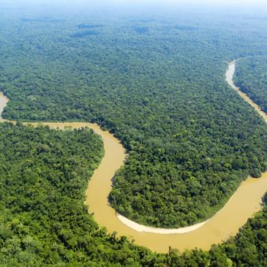 Amazonie les méandres du Rio Solimoes