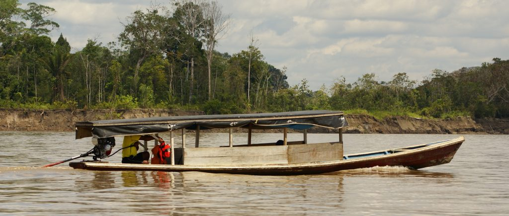 A motorised canoe travels along the Amazon river.