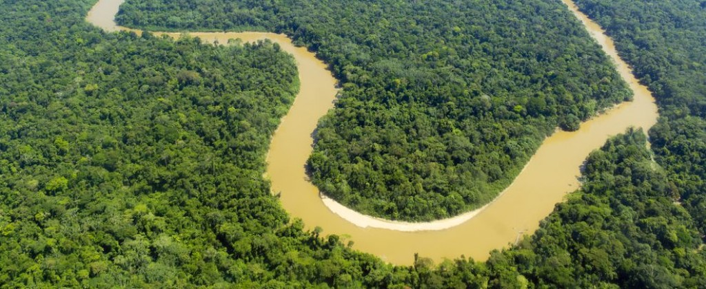 The Amazon river meanders through the jungle.