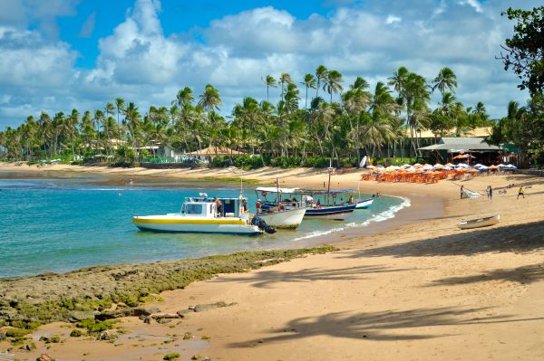 Boats on the beach at praia do forte ready to take tourists to the surrounding areas.