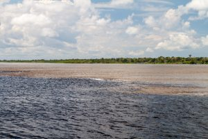 "The mythical ""Encounter of the waters,"" where the Rio Solimoes and Rio Negro run side by side but never mix."