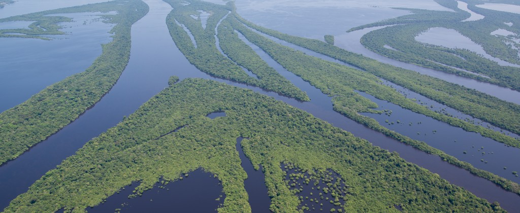 The Amazon river and the Rio Negro river running through the Anavihanas, one of the stops on the Rio Negro cruise.