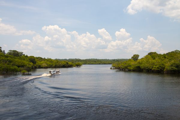 A motorboat excursion on the Amazon river.