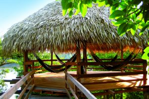 Hammocks hanging in one of the huts of the Juma lodge, perfect for relaxation on an Amazon Vacation.
