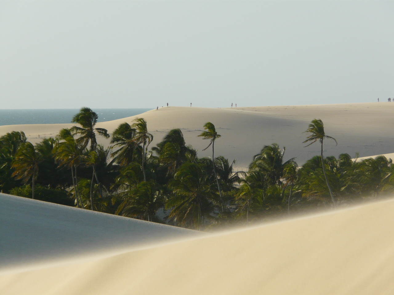 A windy day up in the dunes in Jericoacoara.