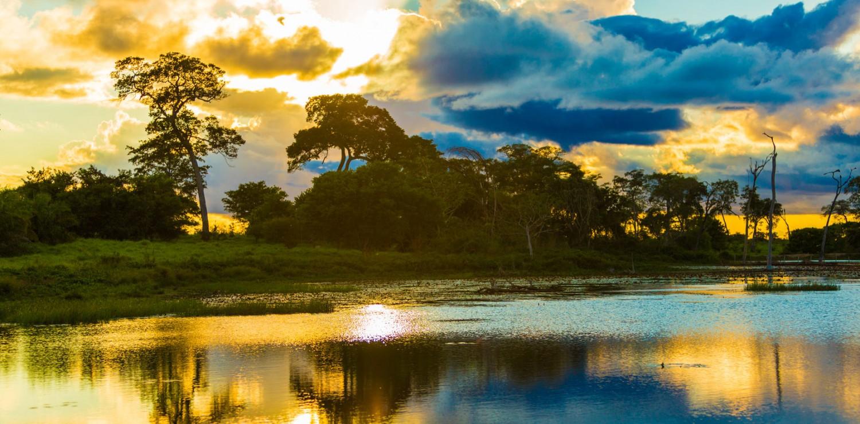 Pantanal north vegan
