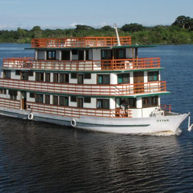 Private Amazon boat, cruises up the river.