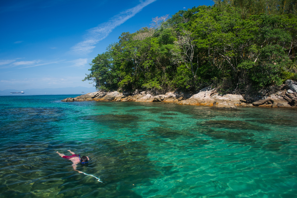 Enjoying the underwater life of the coast of Ilha Grande.