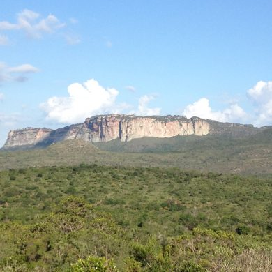 One of the many green covered mountains of Chapada Diamantina.