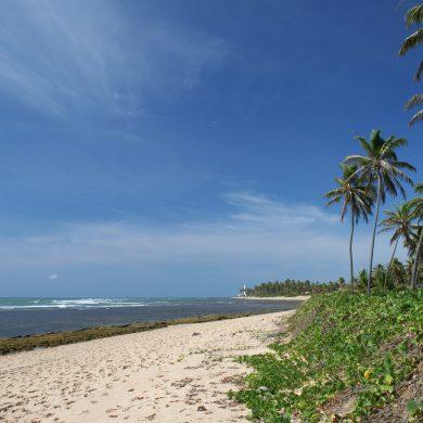 The deserted praia do Forte in Bahia.