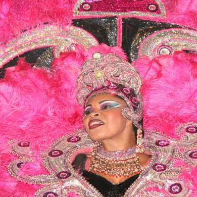 A huge pink dress worn by a woman at Rio de Janeiro carnival.