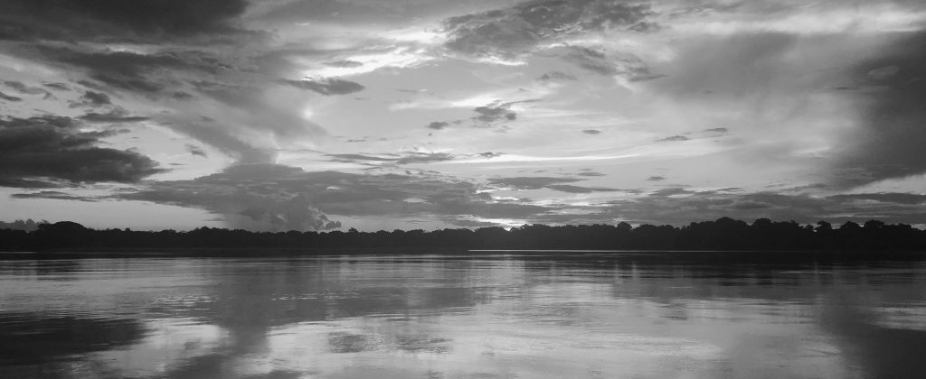 Black and White Picture of the Amazon.