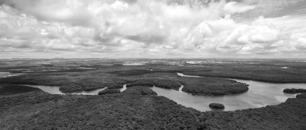 Black and White Amzon river from above.