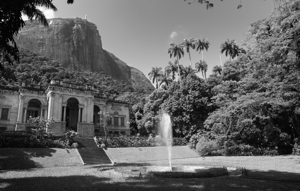 Tijuca Forest in Rio de Janeiro - black and white. Part of Honeymoon tour in Brazil.